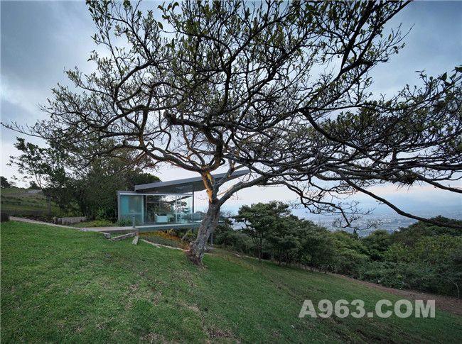 与榕树形成一体的小屋不仅仅是一个房子,更是一个可以享受自然,并可以和家人朋友度过下午和部分晚上时光的地方。