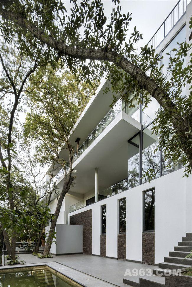 亲近自然的墨西哥森林别墅