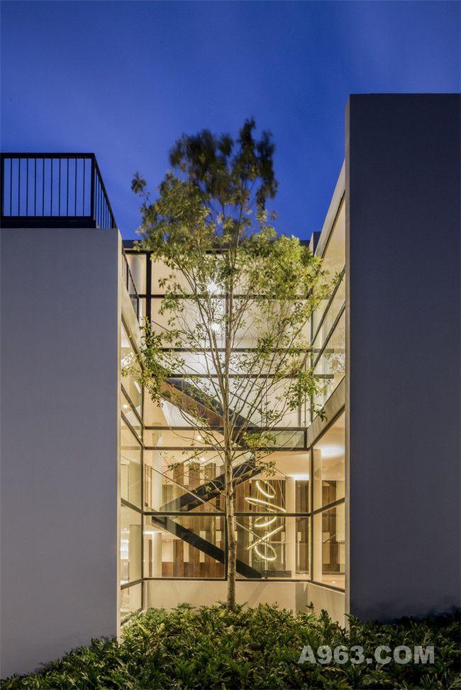 阶梯及中庭