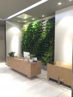 大明宫 瓷砖店-植物墙