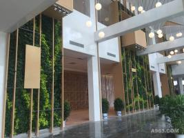 聊城东阿乐活中心植物墙