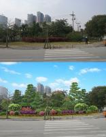 水仙大街道路景观设计