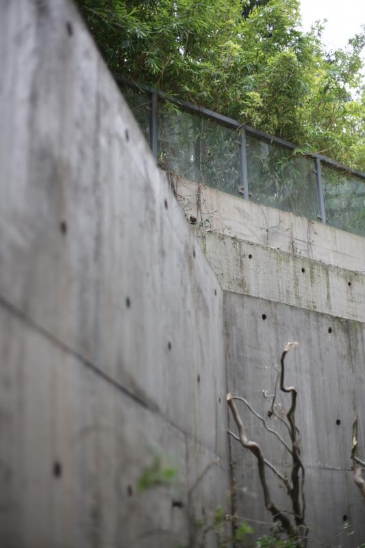 一层外的水塘倒映着建筑的外立面,空间的层次关系更加分明。大片的落地窗配上干净利落的墙面和简洁明了的logo,让设计公司的设计味道一览无余。这种少即是多的手法在这一刻达到了炉火纯青的地步。