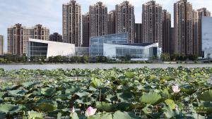 本则设计丨 三水文化中心:以风荷雅韵,写意城市文化名片